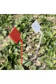 15 pcs 30cm Plastic Plant Tags T-Type Markers Nursery Garden Labels Stakes Multi Color